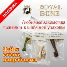 RoyalBone-mini